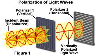 polarizedlightfigure1